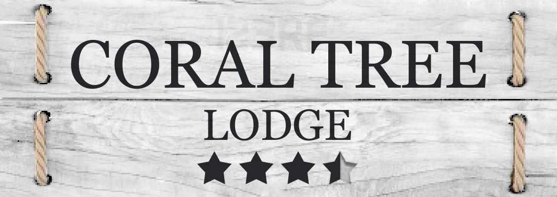 Coral Tree Lodge – Caravan Park NSW
